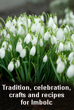 A Welcome to Imbolc