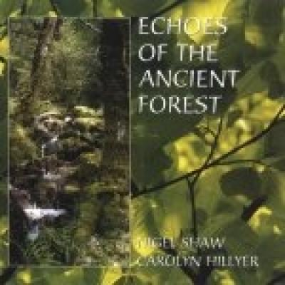 Echoes Of The Ancient Forest by Nigel Shaw & Carolyn Hillyer