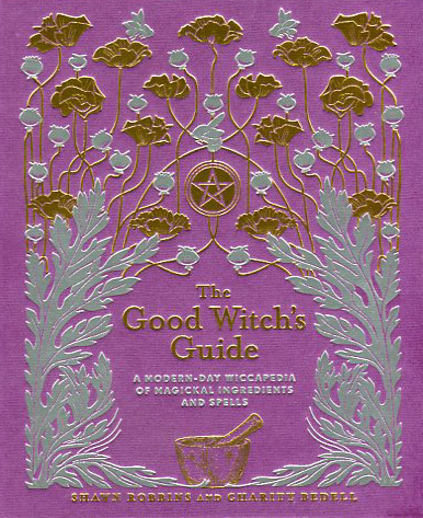 The Good Witch's Guide by Shawn Robbins & Charity Bedell