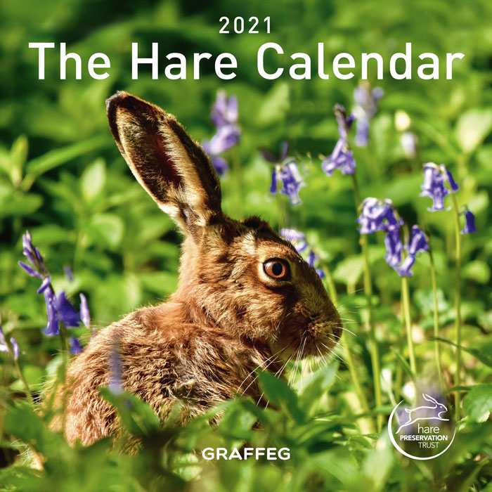 The Hare Calendar 2021 NOT YET AVAILABLE